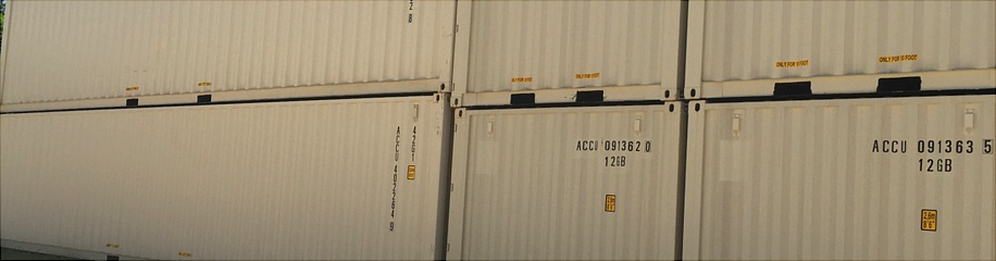 New Used Shipping Containers For Sale Texas Storage